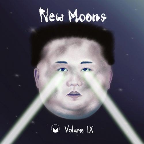 New Moons Vol. IX by Various Artists