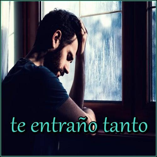 Te Entraño Tanto de Various Artists