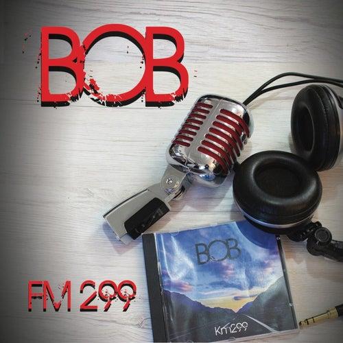 Fm 299 von Bob