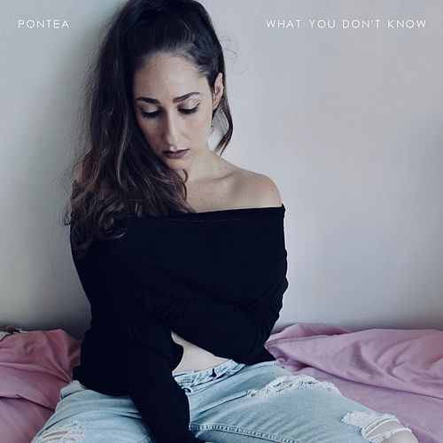 What You Don't Know by Pontea