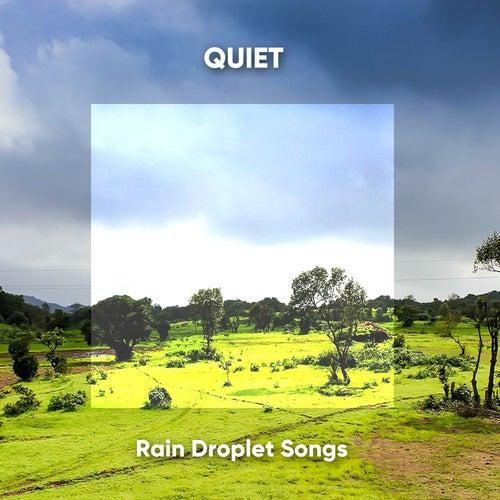Quiet Rain Droplet Songs de Fabricantes de Lluvia