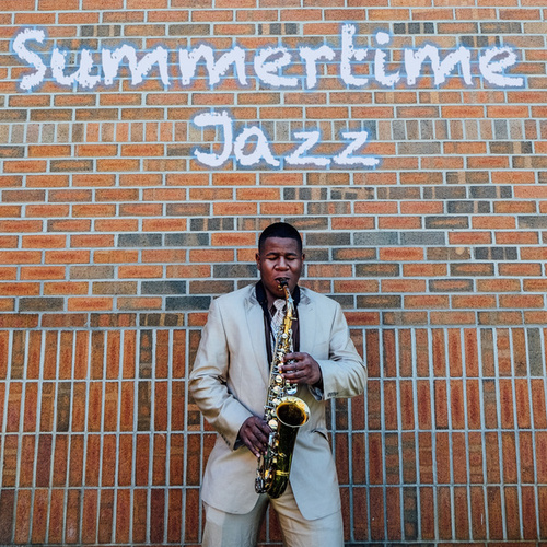 Summertime Jazz de Various Artists