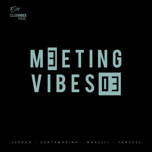 Meeting Vibes 03 de Various Artists