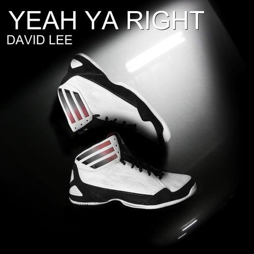 Yeah Ya Right by David Lee