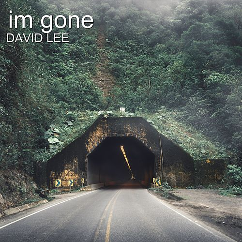 Im Gone by David Lee