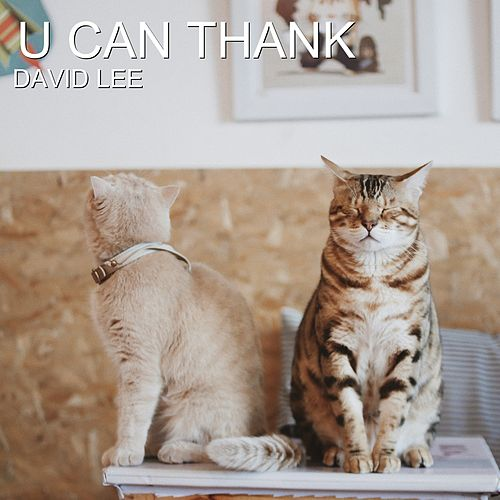 U Can Thank by David Lee