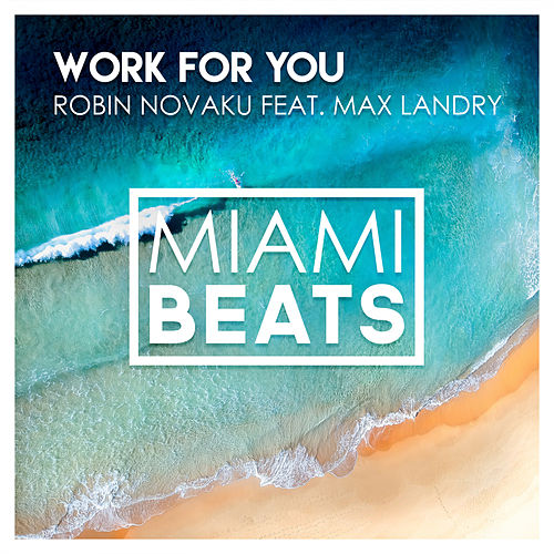 Work For You (feat. Max Landry) de Robin Novaku