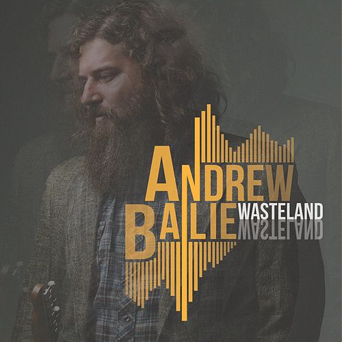 Wasteland by Andrew Bailie