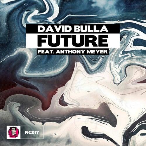 Future by David Bulla