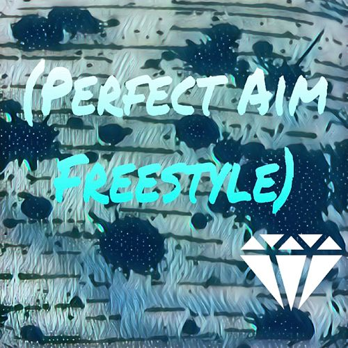 Perfect Aim Freestyle by Young Ace