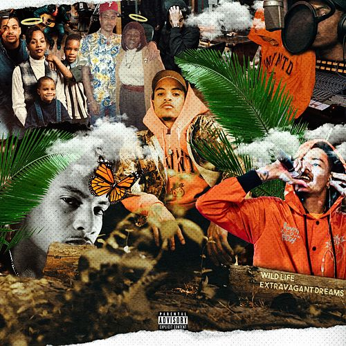 Wild Life, Extravagant Dreams by Izze
