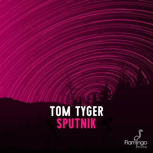 Sputnik (Radio Edit) by Tom Tyger
