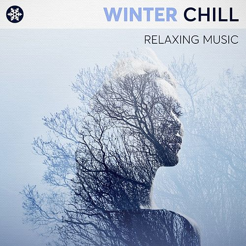 Winter Chill: Relaxing Music von Various Artists