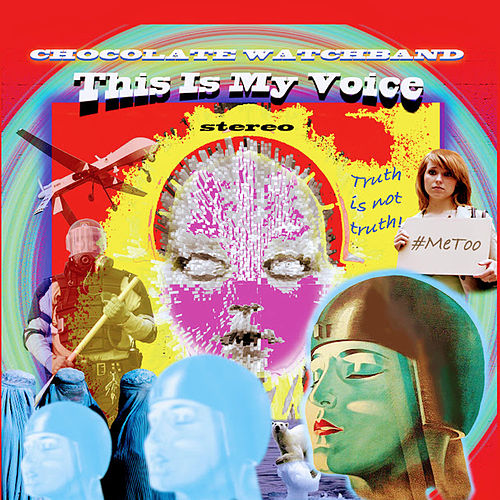This Is My Voice by The Chocolate Watchband