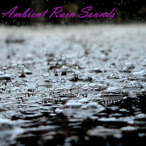 Ambient Rain Sounds by Switch