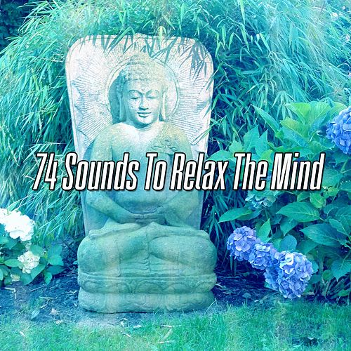 74 Sounds To Relax The Mind de Massage Tribe