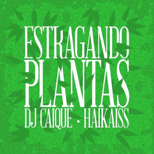 Estragando Plantas by DJ Caique