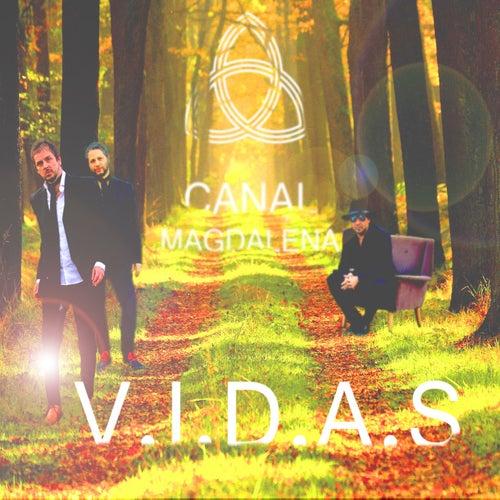 V.I.D.A.S de Canal Magdalena
