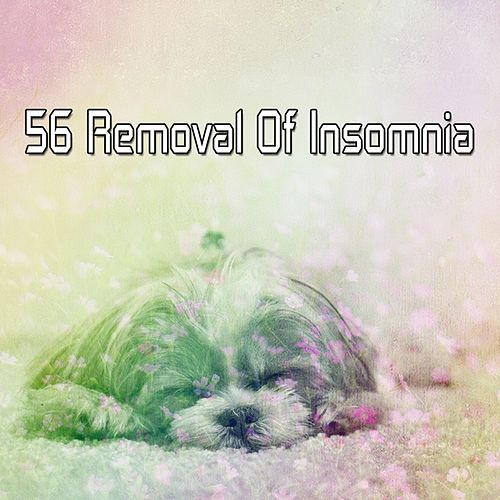 56 Removal Of Insomnia von Rockabye Lullaby