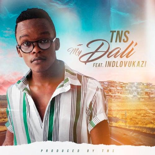 My Dali de TNS