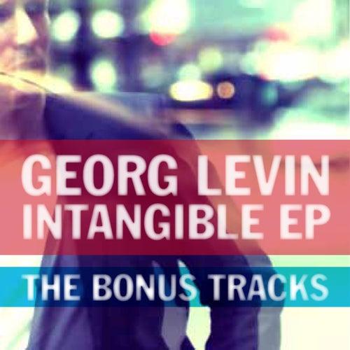 Intangible EP - The Bonus Tracks de Georg Levin (1)