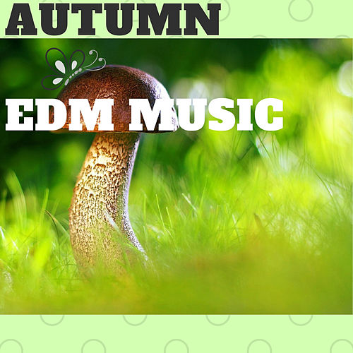 Autumn Edm Music de Various