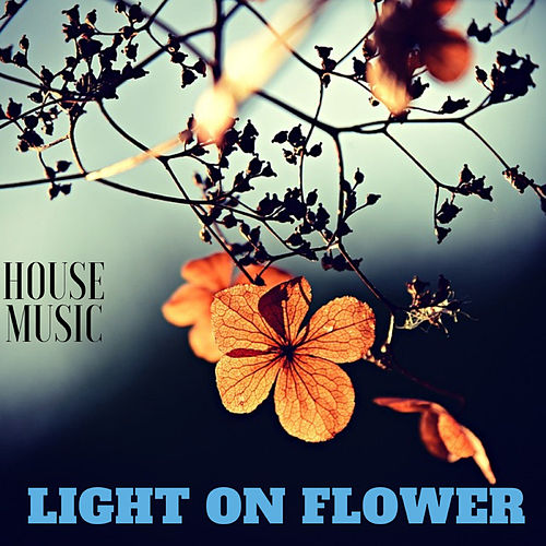 Light On Flower House Music de Various