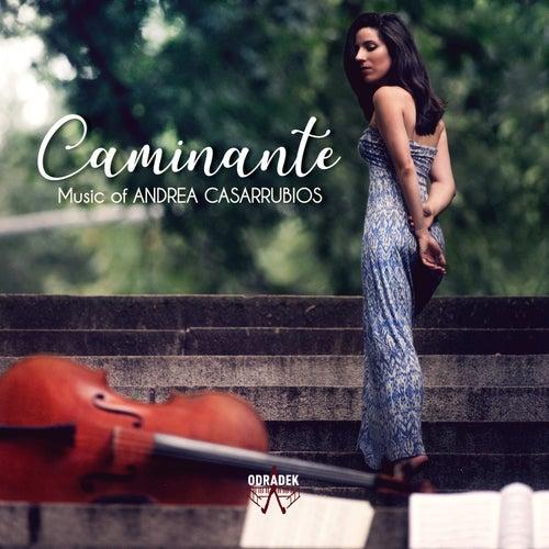 Caminante von Andrea Casarrubios