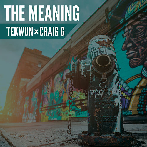 The Meaning de DJ Tek-Wun