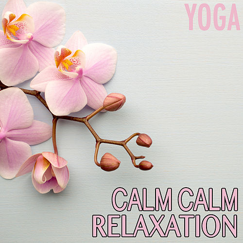 Calm Calm Relaxation von Various Artists
