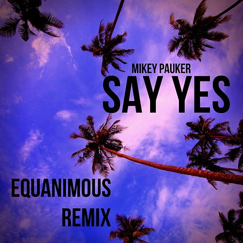 Say Yes (Equanimous Remix) by Mikey Pauker