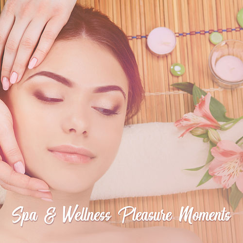 Spa & Wellness Pleasure Moments – Relaxation Massage New Age Music by Relaxation and Dreams Spa