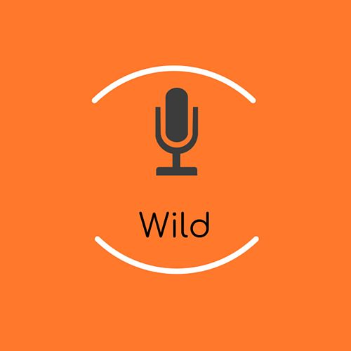 Wild (Instrumental) de Catherine McGrath