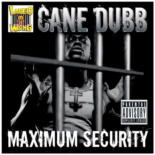 Maximum Security by Cane Dubb