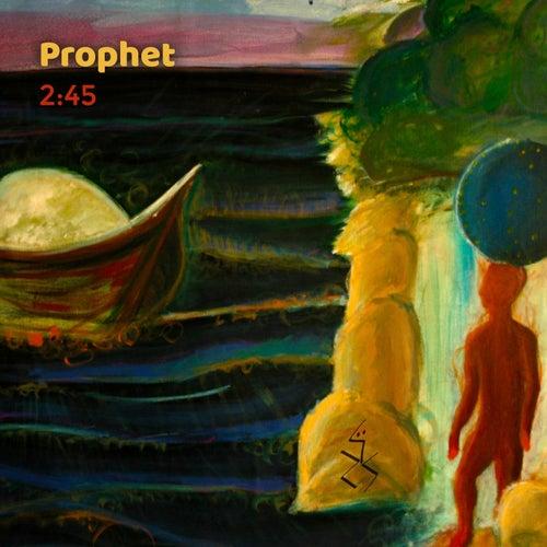 Prophet by 245