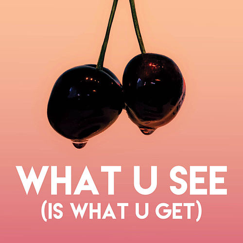 What U See (Is What U Get) de Sassydee