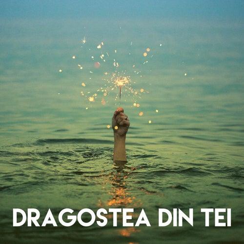 Dragostea Din Tei by CDM Project