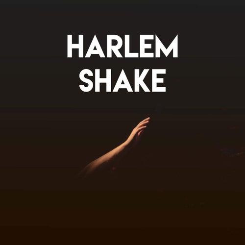 Harlem Shake by CDM Project