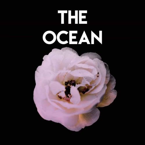 The Ocean von Vibe2Vibe