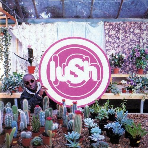 Lovelife von Lush