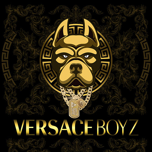 VERSACE BOYZ (feat. DirtyDogz) by Metz