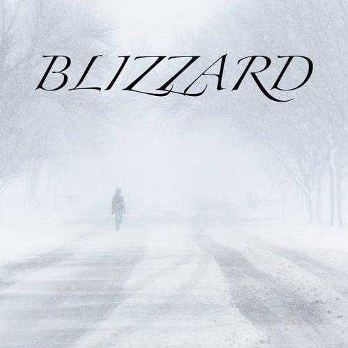 Blizzard de Relax Nature ASMR