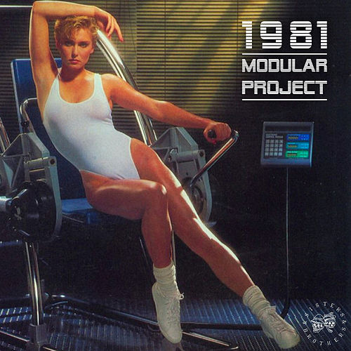 1981 - Sisters & Brothers, Vol. 06 von Modular Project