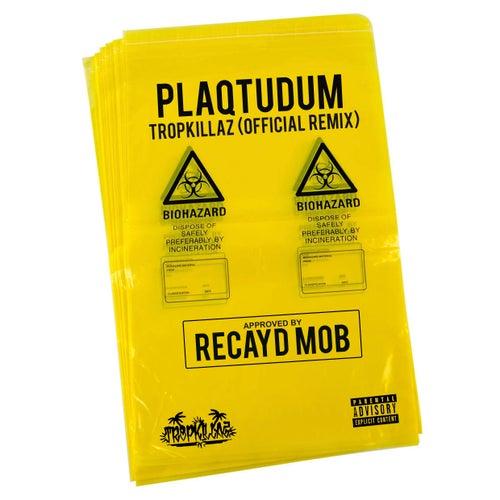 Plaqtudum (Tropkillaz Remix) de Recayd Mob