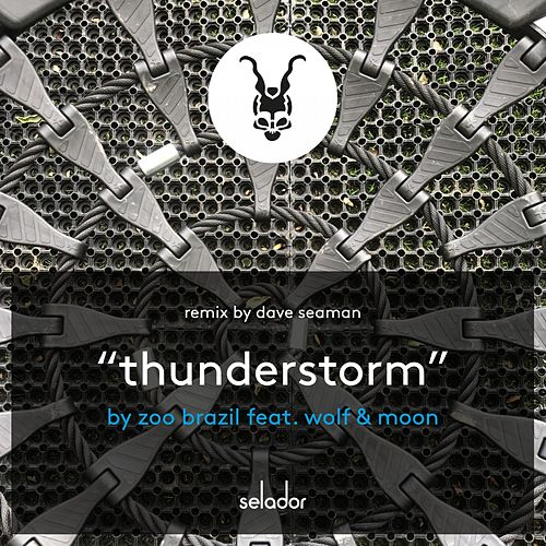 Thunderstorm by Zoo Brazil
