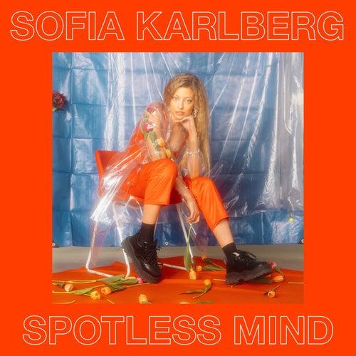 Spotless Mind by Sofia Karlberg