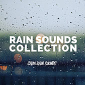 Calm Rain Sounds by Rain Sounds Collection