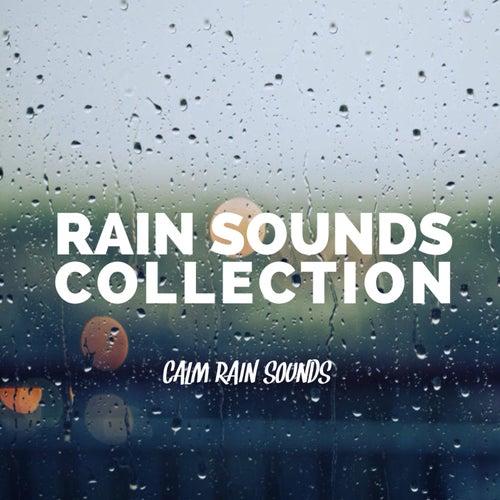Calm Rain Sounds de Rain Sounds Collection