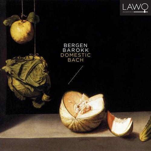 Domestic Bach de Bergen Barokk