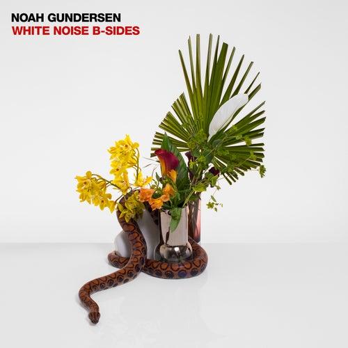 White Noise B-Sides by Noah Gundersen